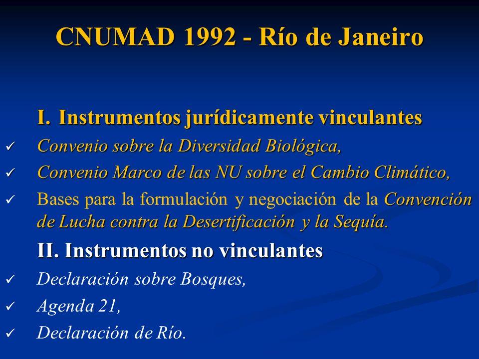 CNUMAD 1992 - Río de Janeiro I. Instrumentos jurídicamente vinculantes