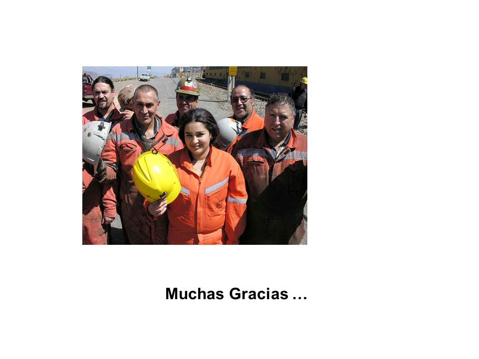 Muchas Gracias …
