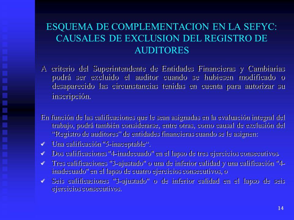 ESQUEMA DE COMPLEMENTACION EN LA SEFYC: CAUSALES DE EXCLUSION DEL REGISTRO DE AUDITORES