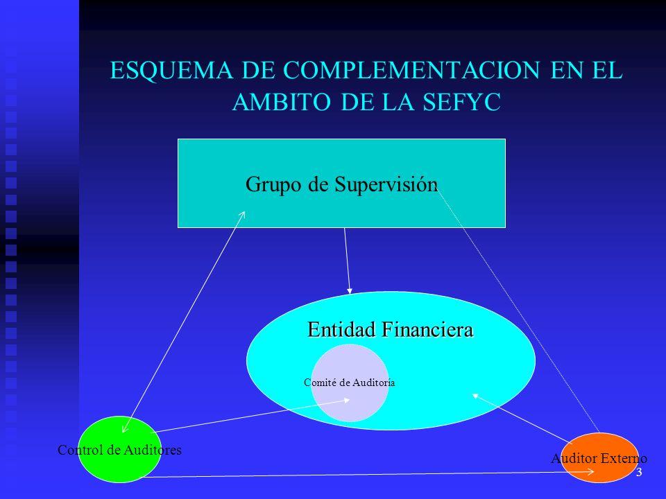 ESQUEMA DE COMPLEMENTACION EN EL AMBITO DE LA SEFYC