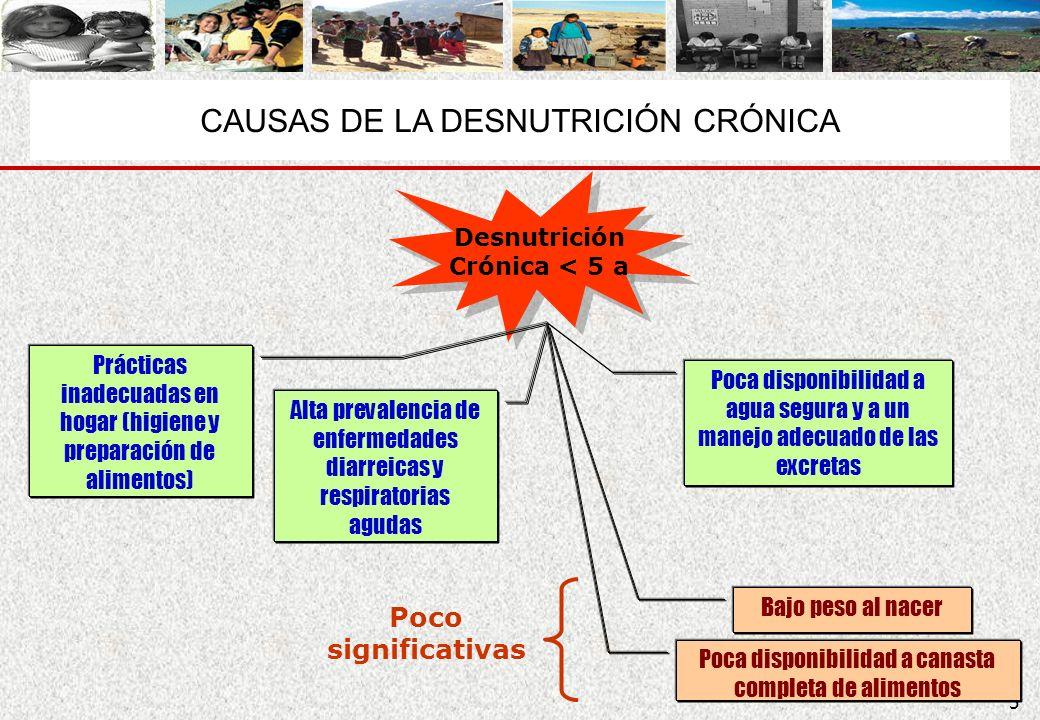 CAUSAS DE LA DESNUTRICIÓN CRÓNICA