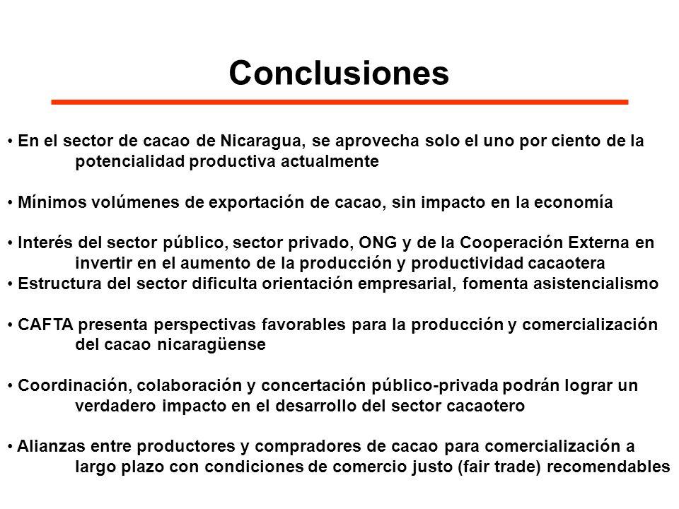Conclusiones En el sector de cacao de Nicaragua, se aprovecha solo el uno por ciento de la potencialidad productiva actualmente.