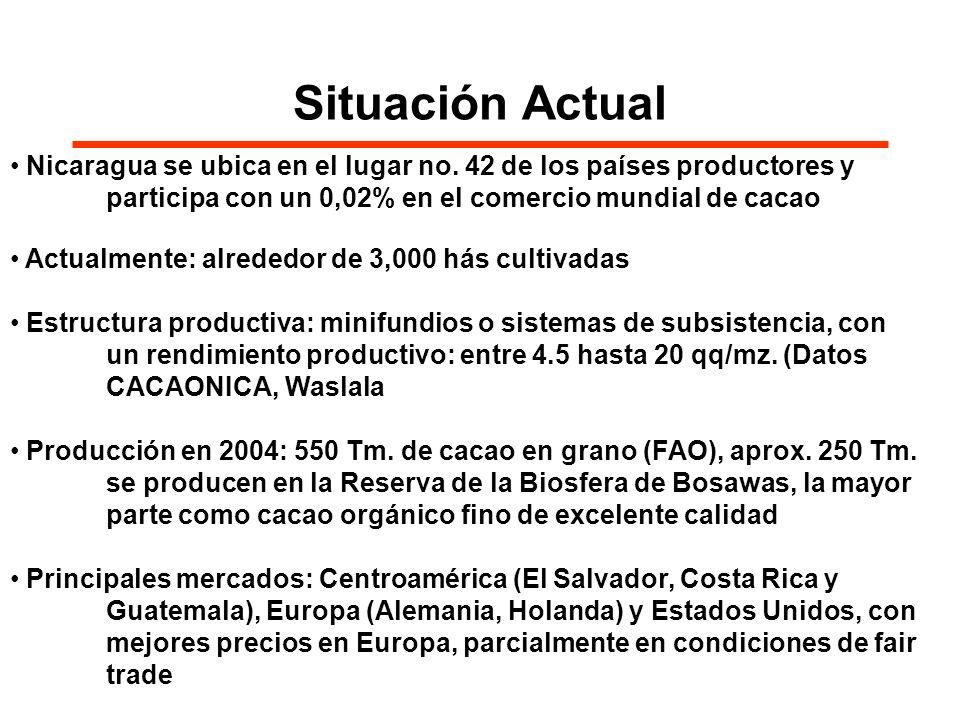Situación ActualNicaragua se ubica en el lugar no. 42 de los países productores y participa con un 0,02% en el comercio mundial de cacao.