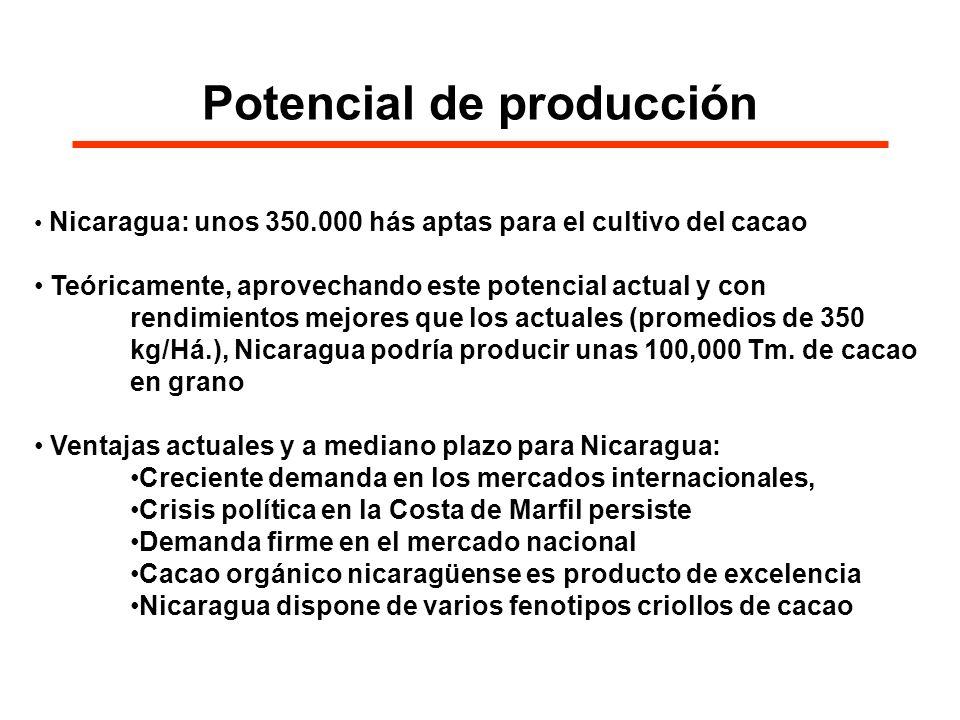 Potencial de producción