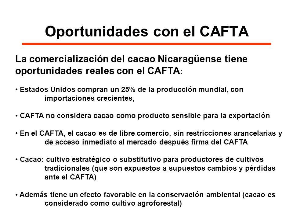 Oportunidades con el CAFTA