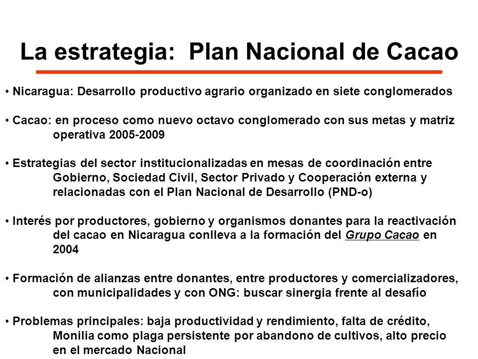 La estrategia: Plan Nacional de Cacao