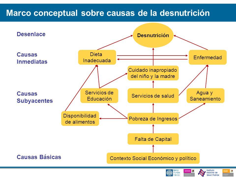 Marco conceptual sobre causas de la desnutrición