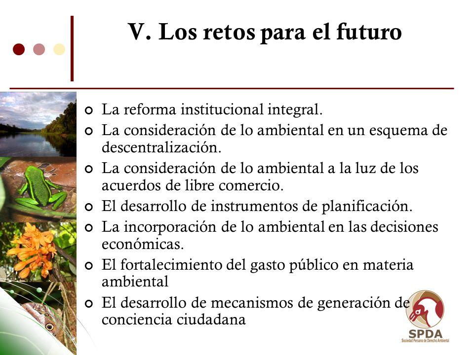 V. Los retos para el futuro