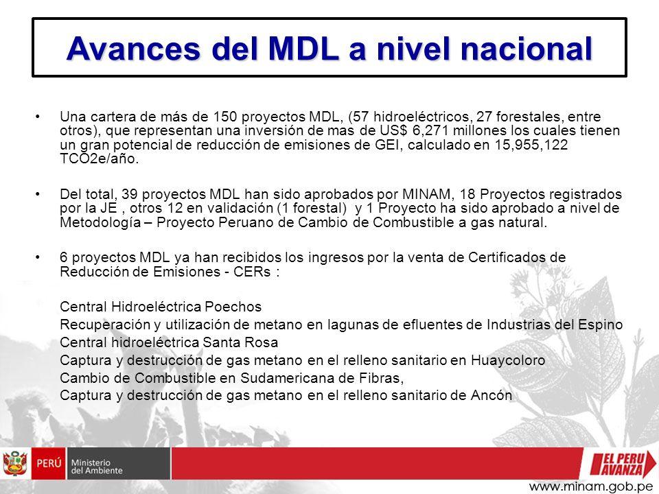 Avances del MDL a nivel nacional
