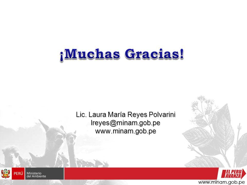 Lic. Laura María Reyes Polvarini lreyes@minam.gob.pe www.minam.gob.pe