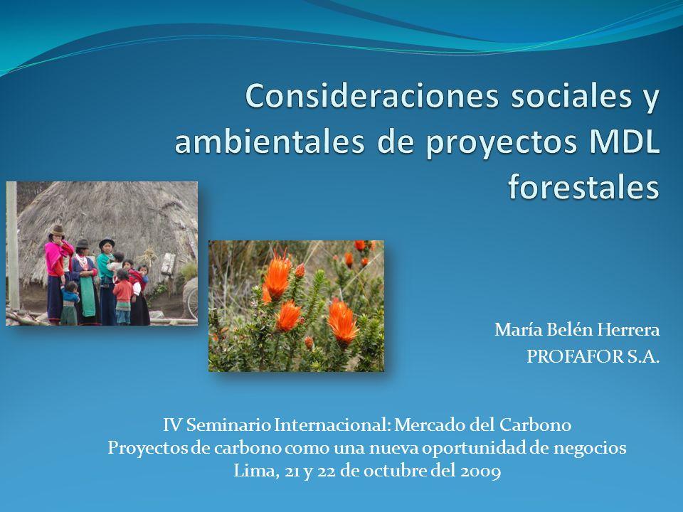Consideraciones sociales y ambientales de proyectos MDL forestales