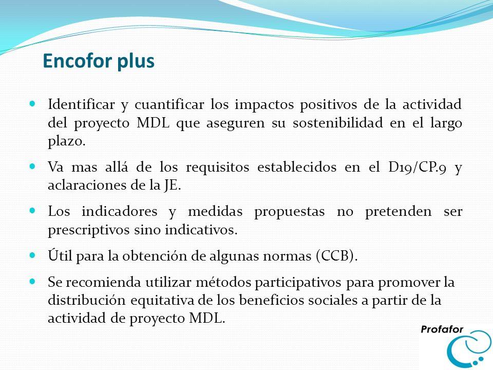 Encofor plus Identificar y cuantificar los impactos positivos de la actividad del proyecto MDL que aseguren su sostenibilidad en el largo plazo.