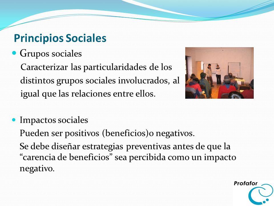 Principios Sociales Grupos sociales