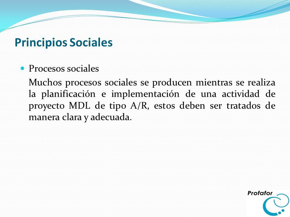 Principios Sociales Procesos sociales