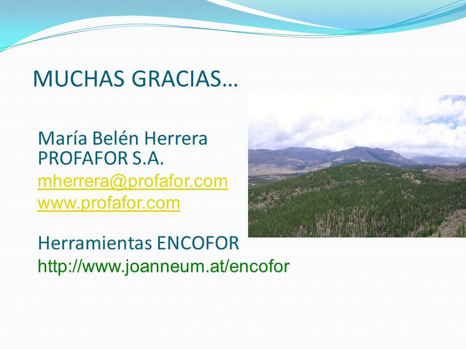 MUCHAS GRACIAS… María Belén Herrera PROFAFOR S.A. Herramientas ENCOFOR