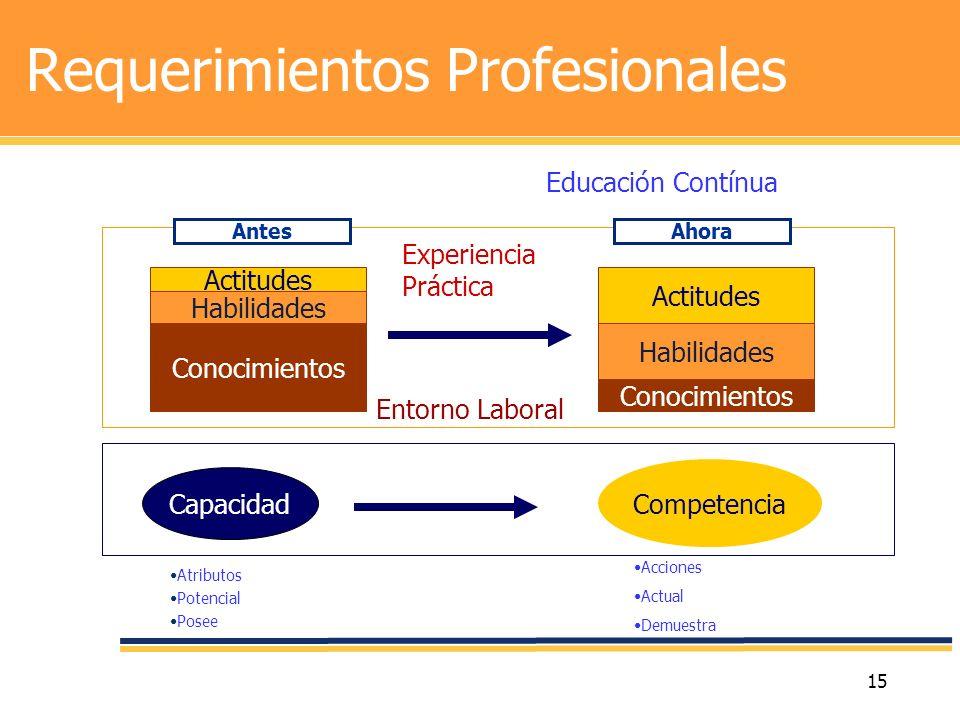 Requerimientos Profesionales
