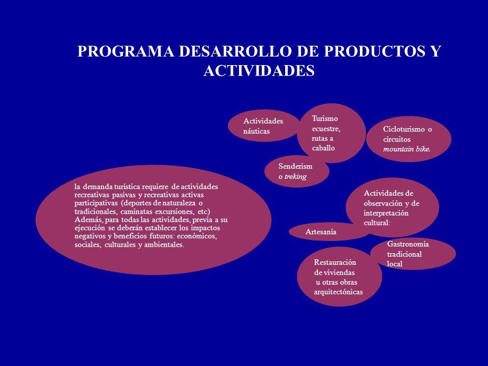 PROGRAMA DESARROLLO DE PRODUCTOS Y ACTIVIDADES