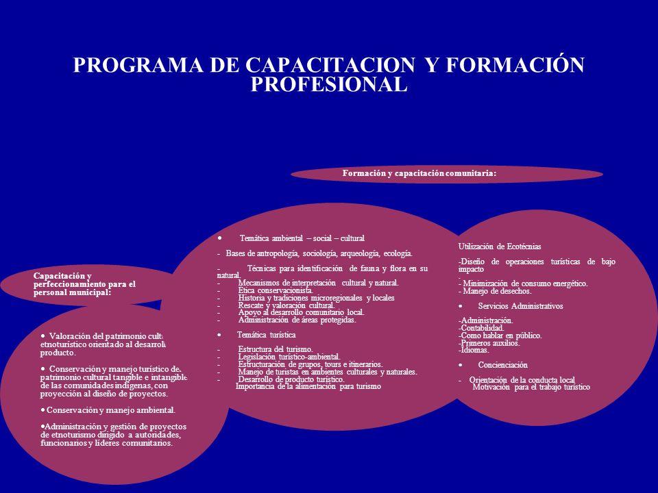 PROGRAMA DE CAPACITACION Y FORMACIÓN PROFESIONAL
