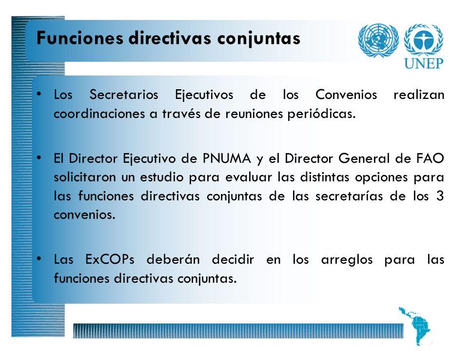 Funciones directivas conjuntas