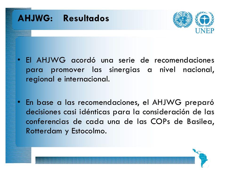 AHJWG: Resultados El AHJWG acordó una serie de recomendaciones para promover las sinergias a nivel nacional, regional e internacional.