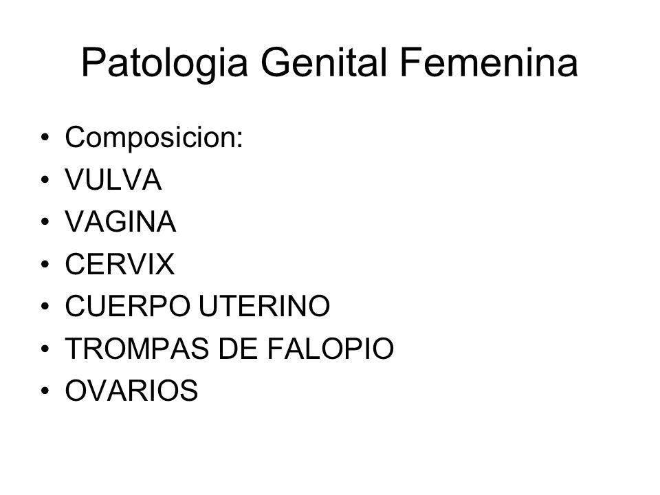 Patologia Genital Femenina