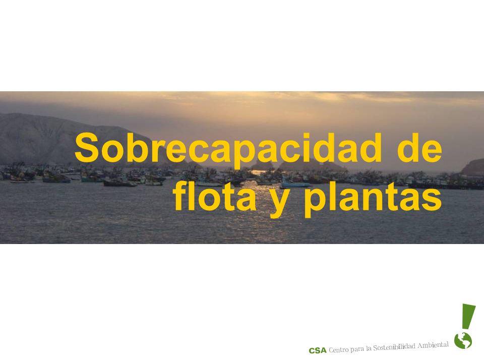 Sobrecapacidad de flota y plantas