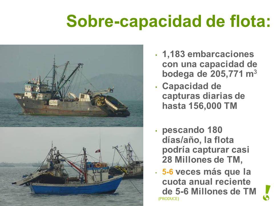 Sobre-capacidad de flota: