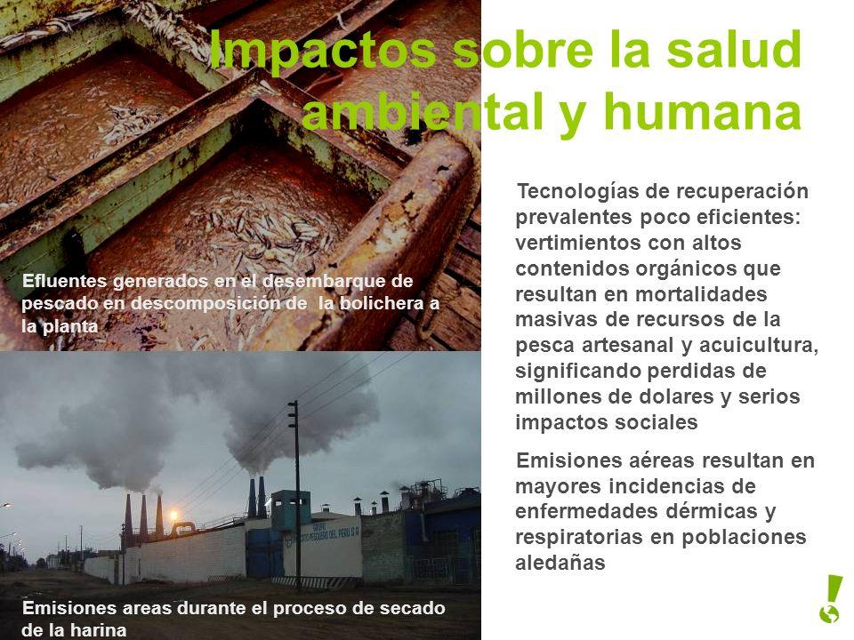 Impactos sobre la salud ambiental y humana
