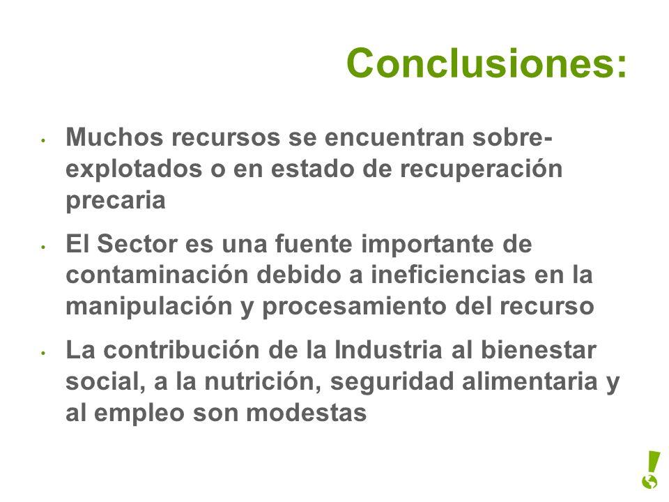 Conclusiones: Muchos recursos se encuentran sobre-explotados o en estado de recuperación precaria.