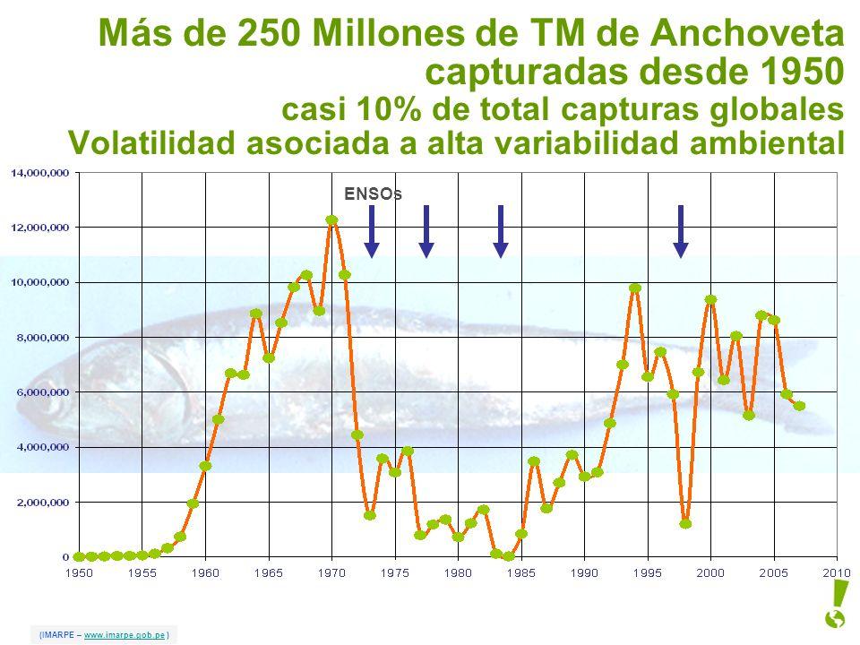 Más de 250 Millones de TM de Anchoveta capturadas desde 1950 casi 10% de total capturas globales Volatilidad asociada a alta variabilidad ambiental