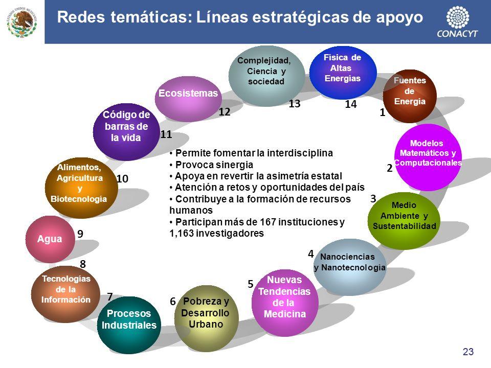 Redes temáticas: Líneas estratégicas de apoyo