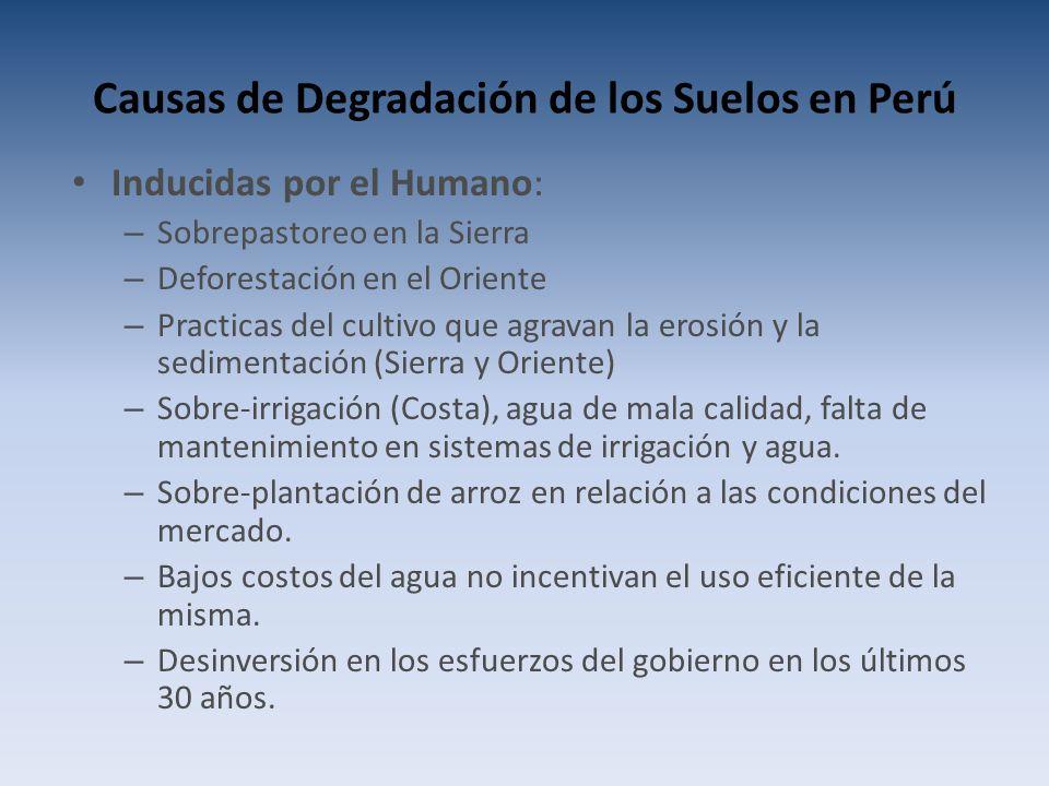 Causas de Degradación de los Suelos en Perú