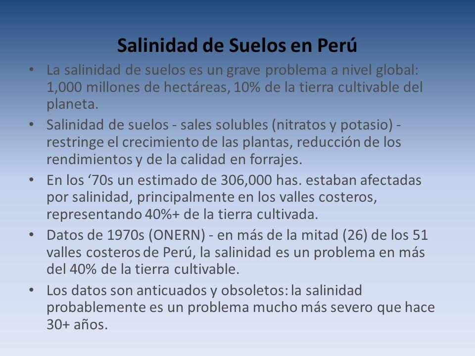 Salinidad de Suelos en Perú