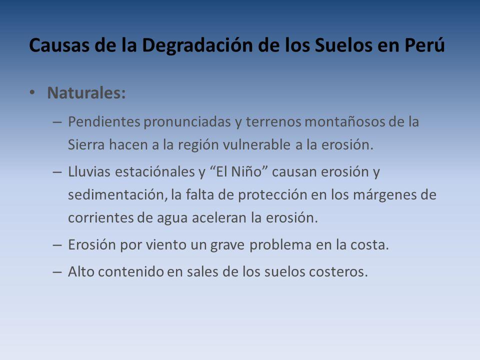 Causas de la Degradación de los Suelos en Perú