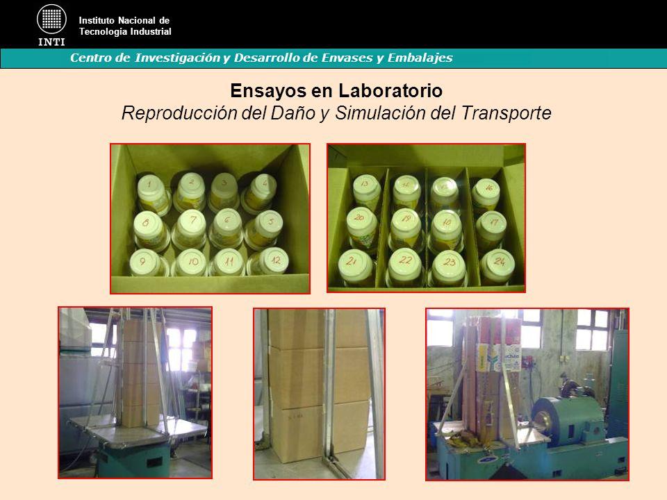 Ensayos en Laboratorio Reproducción del Daño y Simulación del Transporte
