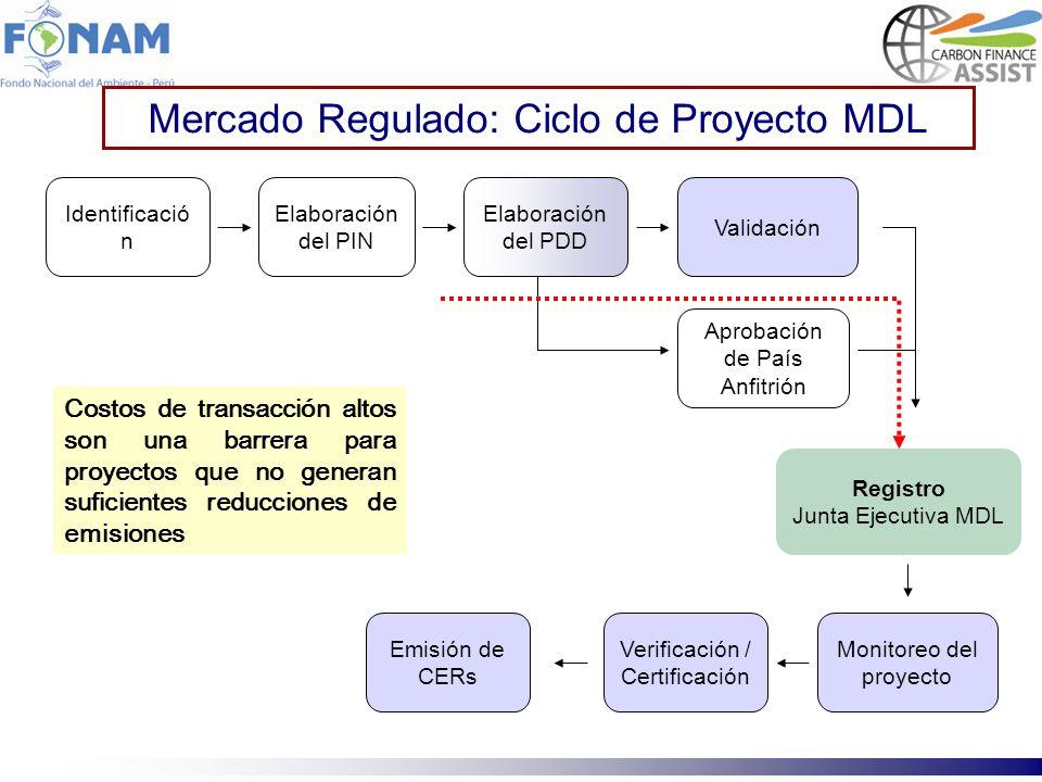 Mercado Regulado: Ciclo de Proyecto MDL