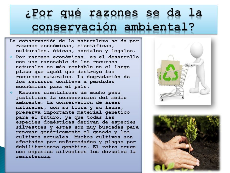 ¿Por qué razones se da la conservación ambiental