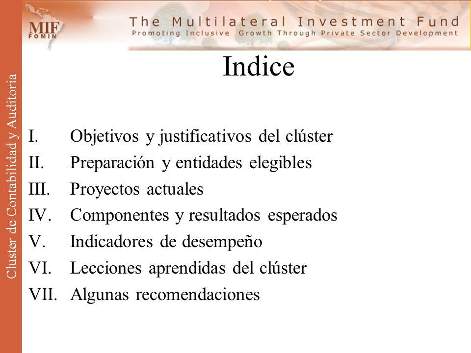 Cluster de Contabilidad y Auditoria
