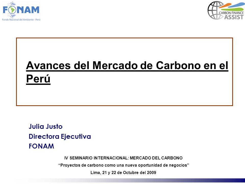 Avances del Mercado de Carbono en el Perú