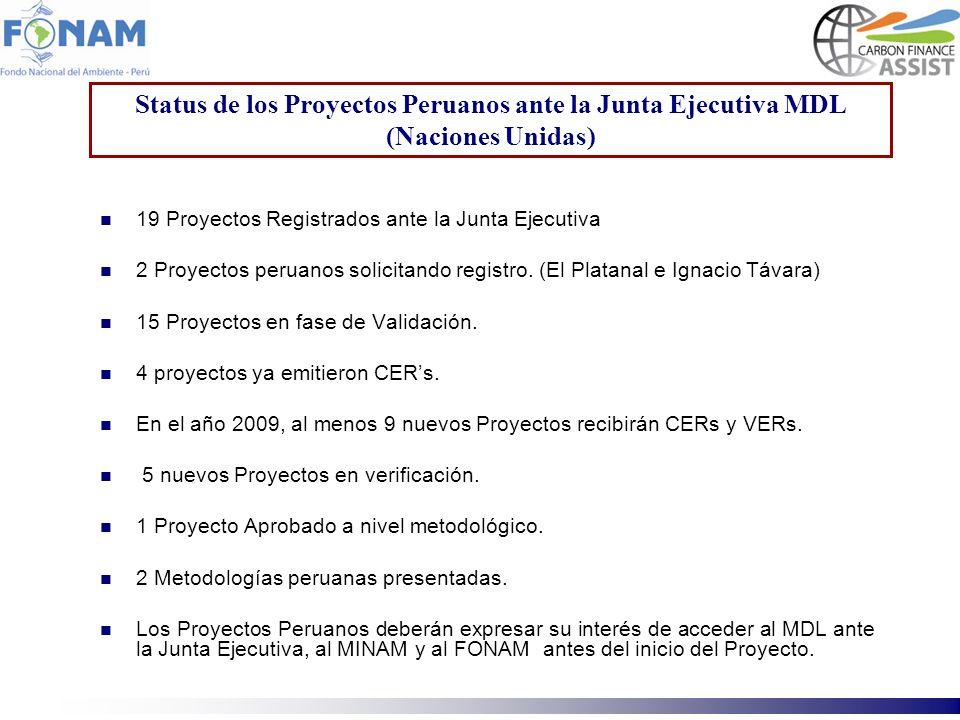 Status de los Proyectos Peruanos ante la Junta Ejecutiva MDL (Naciones Unidas)