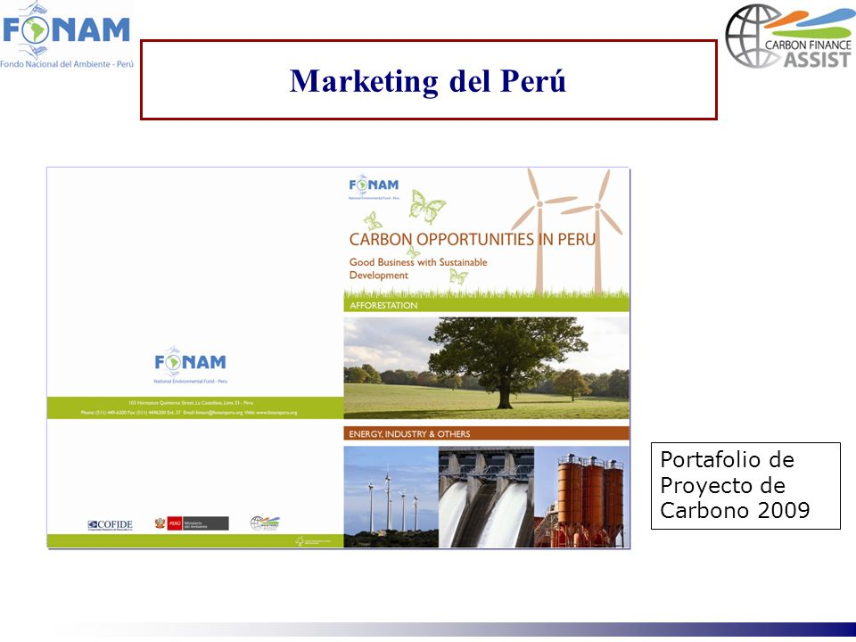 Marketing del Perú Portafolio de Proyecto de Carbono 2009