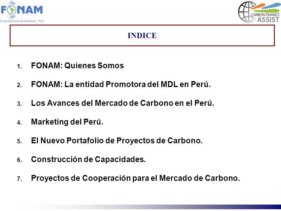 INDICEFONAM: Quienes Somos. FONAM: La entidad Promotora del MDL en Perú. Los Avances del Mercado de Carbono en el Perú.