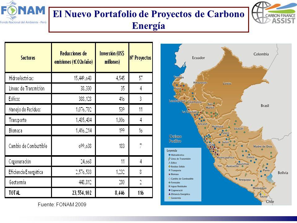 El Nuevo Portafolio de Proyectos de Carbono Energía