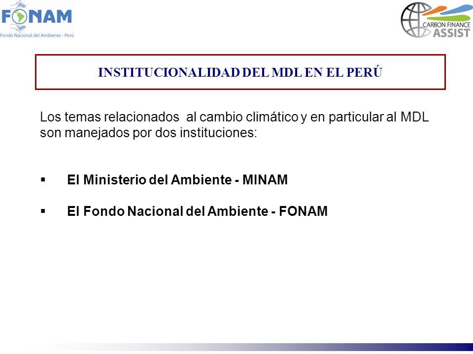 INSTITUCIONALIDAD DEL MDL EN EL PERÚ