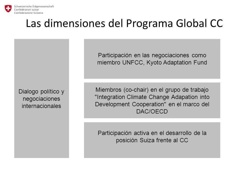 Las dimensiones del Programa Global CC