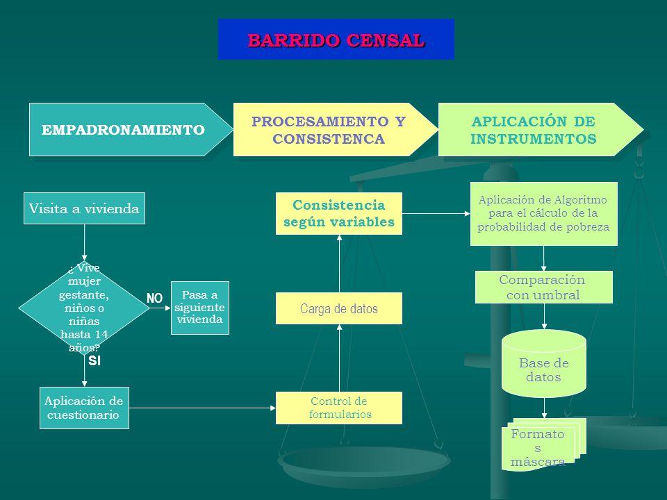 PROCESAMIENTO Y CONSISTENCA APLICACIÓN DE INSTRUMENTOS