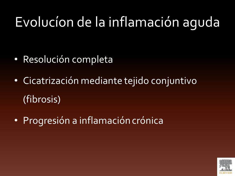 Evolucíon de la inflamación aguda