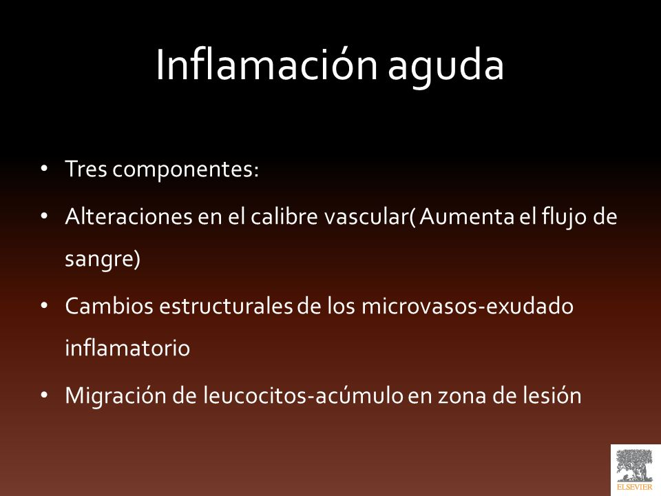 Inflamación aguda Tres componentes: