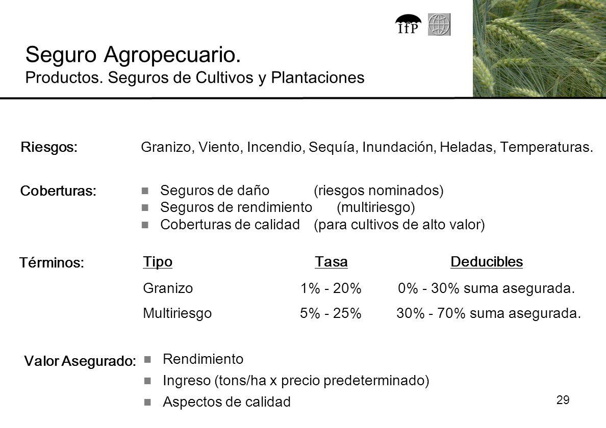 Seguro Agropecuario. Productos. Seguros de Cultivos y Plantaciones