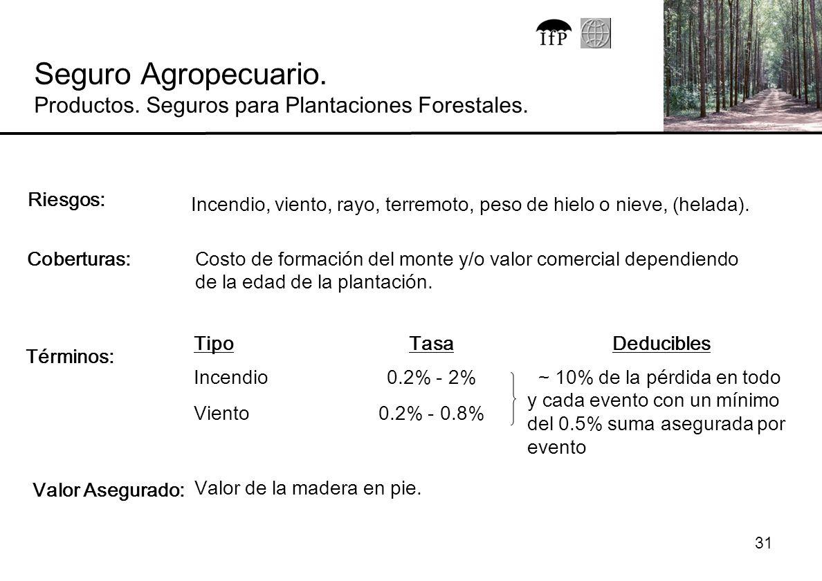 Seguro Agropecuario. Productos. Seguros para Plantaciones Forestales.